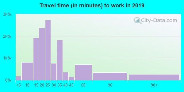 29611 zip code travel time to work (commute)