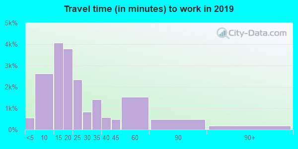 Travel time to work (commute) in zip code 29621