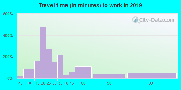 Travel time to work (commute) in zip code 29653