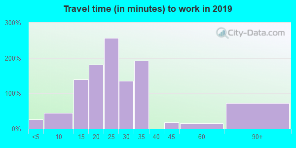 Travel time to work (commute) in zip code 29809