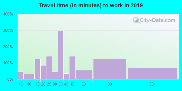 Travel time to work (commute) in zip code 31002