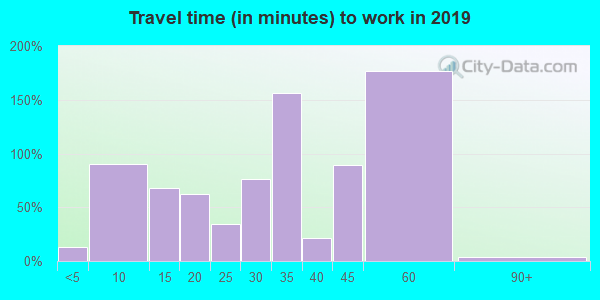 Travel time to work (commute) in zip code 31781