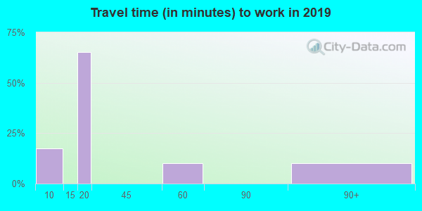 31814 zip code travel time to work (commute)