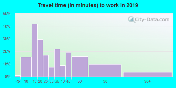 Travel time to work (commute) in zip code 32164