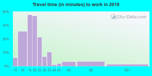 Travel time to work (commute) in zip code 32301