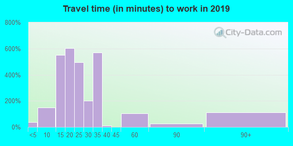 35207 zip code travel time to work (commute)