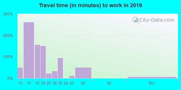 Travel time to work (commute) in zip code 35233
