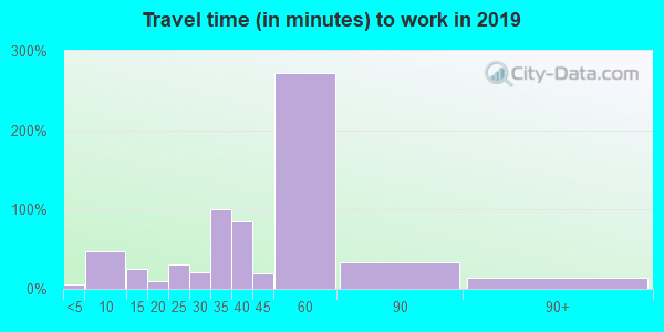 Travel time to work (commute) in zip code 36046