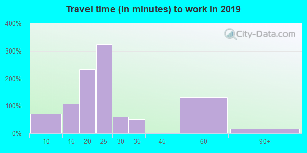 Travel time to work (commute) in zip code 36852
