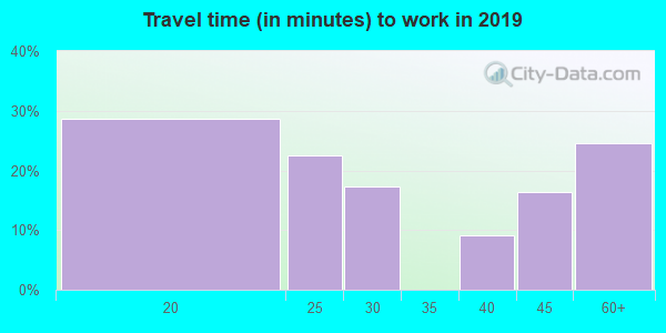 Travel time to work (commute) in zip code 37845