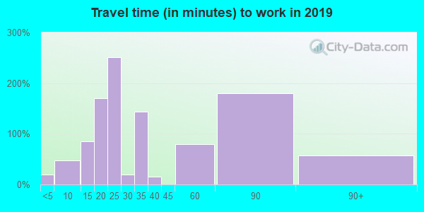 Travel time to work (commute) in zip code 37852