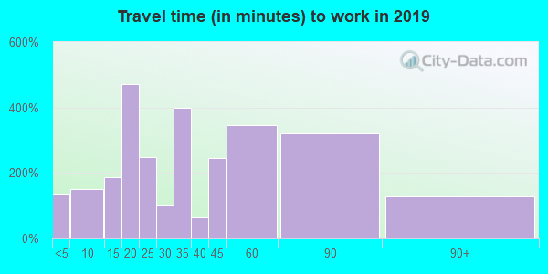 Travel time to work (commute) in zip code 39455