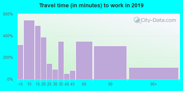 Travel time to work (commute) in zip code 42167