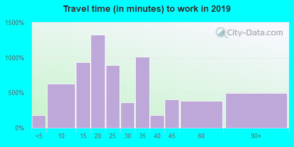 48304 zip code travel time to work (commute)