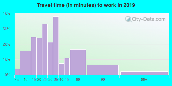 55110 zip code travel time to work (commute)