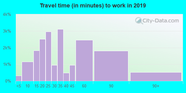Travel time to work (commute) in zip code 60110