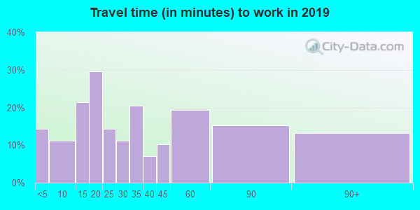 Travel time to work (commute) in zip code 60113