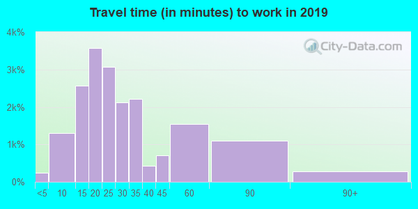 Travel time to work (commute) in zip code 60611