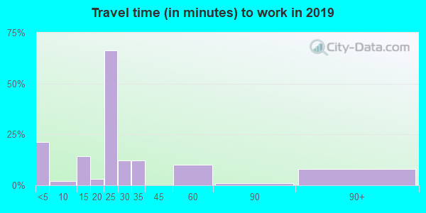 62313 zip code travel time to work (commute)