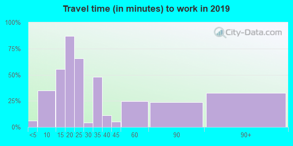 Travel time to work (commute) in zip code 65323