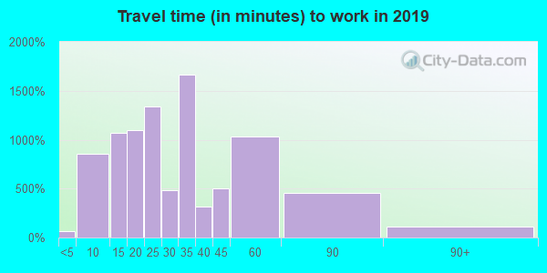 75137 zip code travel time to work (commute)