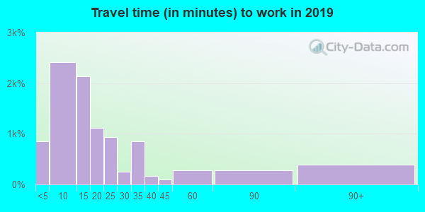 Travel time to work (commute) in zip code 78624