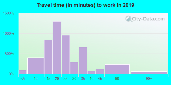 Travel time to work (commute) in zip code 78756