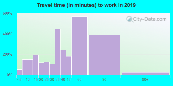 80136 zip code travel time to work (commute)