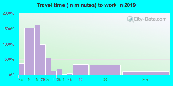 81321 zip code travel time to work (commute)