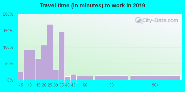 88256 zip code travel time to work (commute)