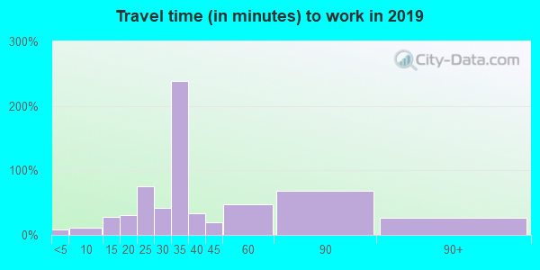 89124 zip code travel time to work (commute)