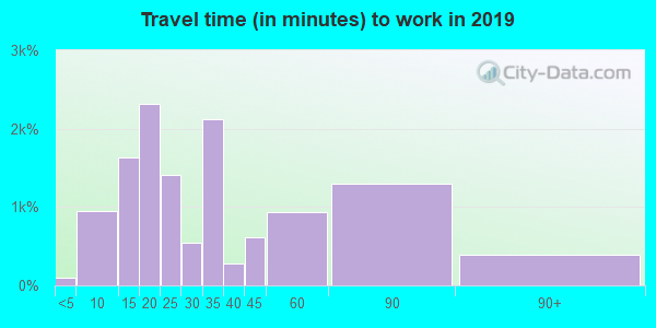 91103 zip code travel time to work (commute)