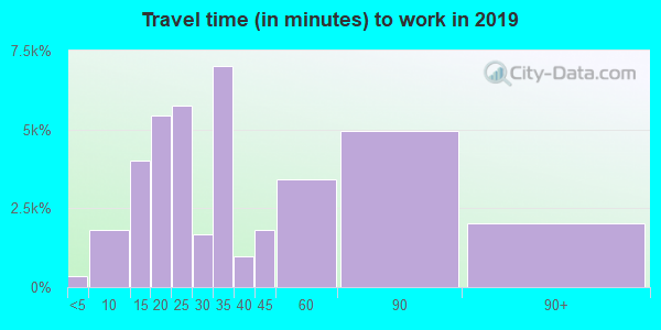 91335 zip code travel time to work (commute)