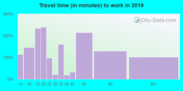 95685 zip code travel time to work (commute)