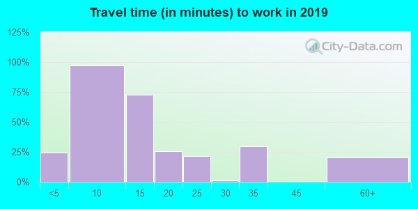 99123 zip code travel time to work (commute)