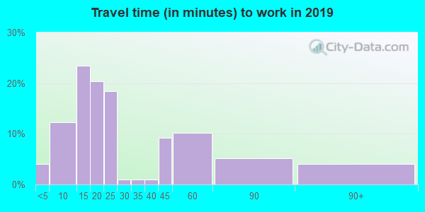 99135 zip code travel time to work (commute)