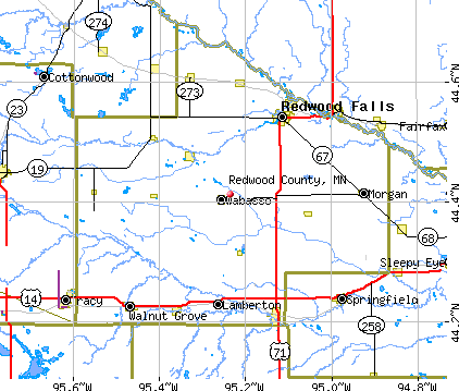 Redwood County, MN map