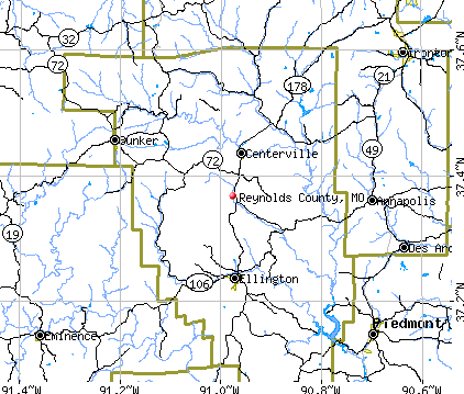 Reynolds County, MO map