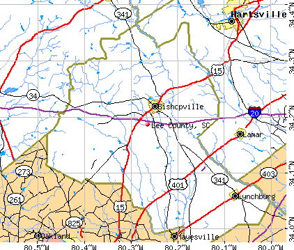 Lee County, SC map