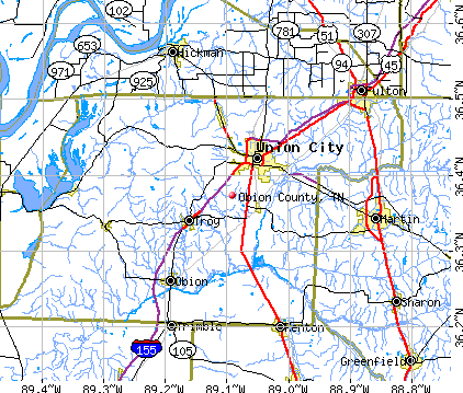 Obion County, TN map