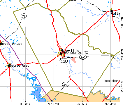 Bee County, TX map