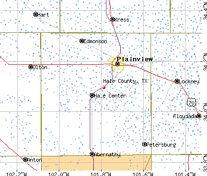 Hale County, TX map