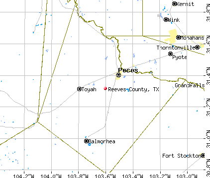 Reeves County, TX map