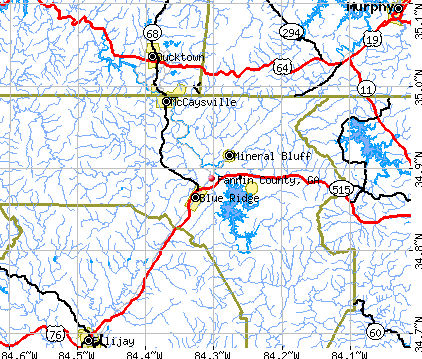Fannin County, GA map