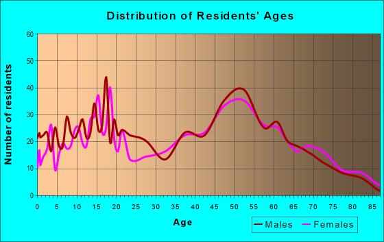 Age and Sex of Residents in zip code 13080