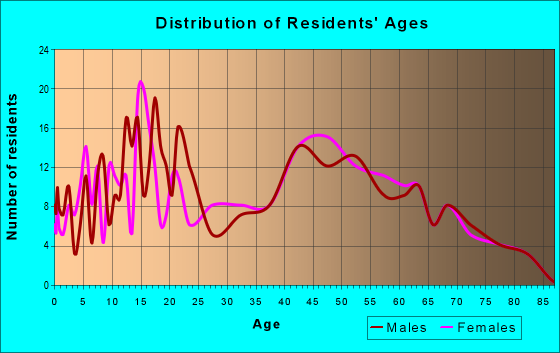 Age and Sex of Residents in zip code 13335