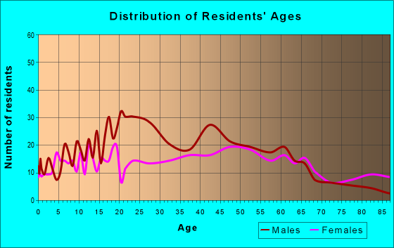 Age and Sex of Residents in zip code 13424
