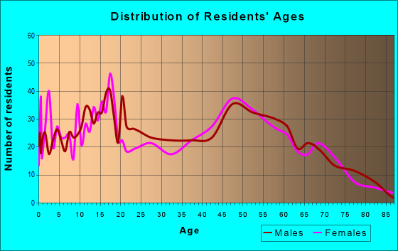 Age and Sex of Residents in zip code 13803