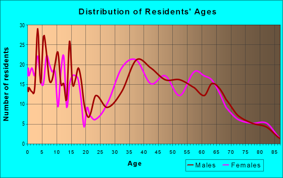 Age and Sex of Residents in zip code 17407