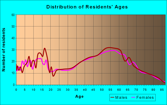Age and Sex of Residents in zip code 17771
